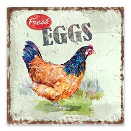 AN001 – Fresh Eggs – 12×12